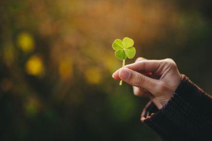 holding-a-four-leaf-clover-553315453-5769550a3df78ca6e403f2df-1
