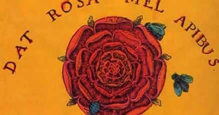DAT-ROSA-MEL-APIBUS